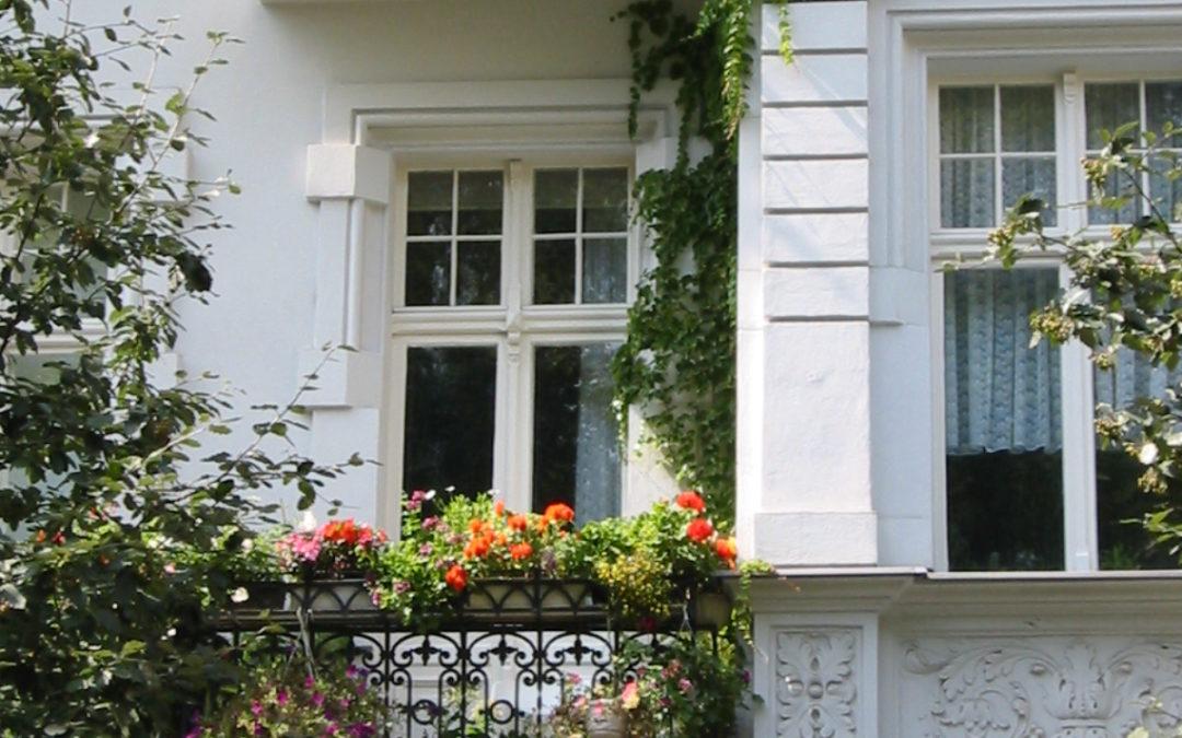 Zimmerpflanzen – Tipps für den Hausgarten