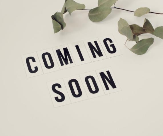 Coming soon – 1- Zimmer Wohnung in Lichterfelde